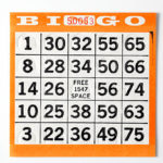 Bingo: 55+