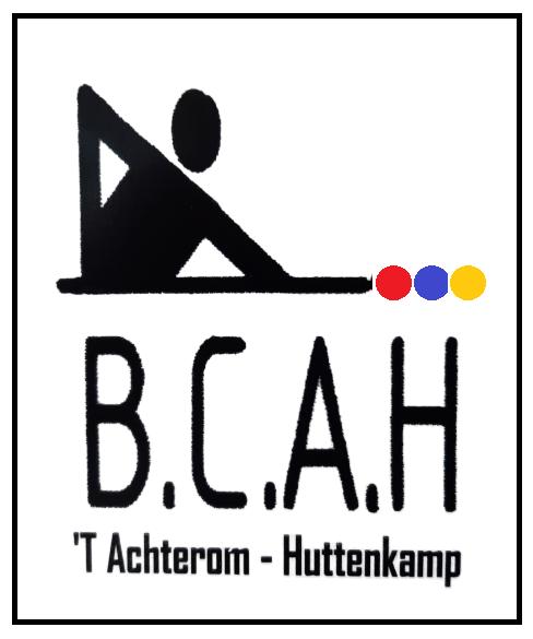 Deze afbeelding heeft een leeg alt-attribuut; de bestandsnaam is BCAH.png